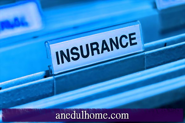 Necessary insurance cover